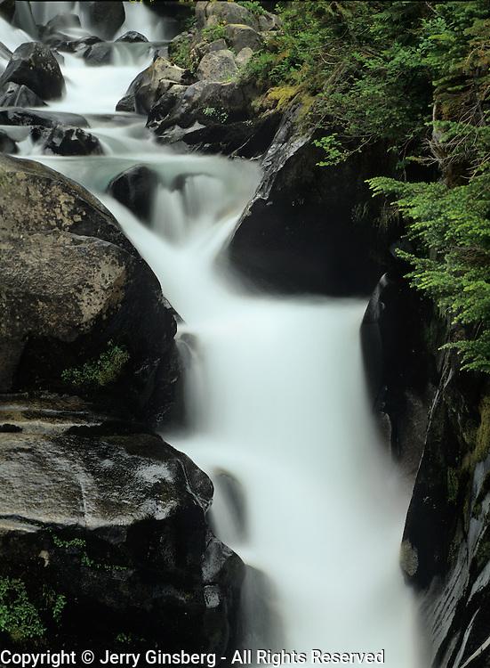 Paradise River cascades downward through Mt. Rainier National Park, WA.