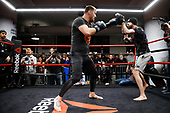 UFC 220 Open Workout