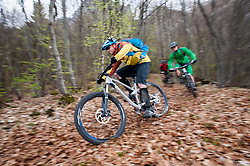 Three Mountainbikers racing through forest