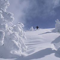 Larry Williamson powder skiing on snowcat-served Peaked Peak.