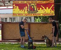 15.06.2013 Wasilkow woj podlaskie N/z Pitbull Show 2013, zawody psow tej rasy fot Michal Kosc / AGENCJA WSCHOD