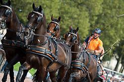 IJsbrand Chardon, (NED), Bravour, Danbrozie, Don Marcell, Winston E, Zepp - Driving Marathon - Alltech FEI World Equestrian Games™ 2014 - Normandy, France.<br /> © Hippo Foto Team - Jon Stroud<br /> 06/09/2014