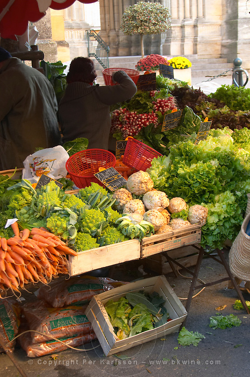 Vegetables and fruits for sale at a market stall at the street market in Bergerac, carrots, salad, lettuce, radishes, selleri root, ... Bergerac Dordogne France