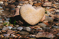 As we made our last bend this afternoon for camp, shining brightly along river right,  a massive heart rock was left for everyone's enjoyment and as a reminder of the love all around us.  Especially in the wilderness.  #HeartRock #River #Paddle #Float #Raft #Watershed @watershed_drybags #riverright #RiverLife #RiverLifestyle #RiverGuide #GuideLife #GuideVibes #TopGuide #GuideForHire #Wilderness #ProtectPublicLands #PublicLands #TRCP #NatureArt