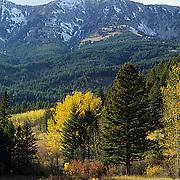 Montana, Bridger mountains. in Fall.