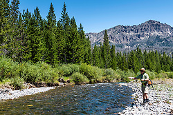 A fly-fisherman adroitly casts a tight loop to a  rising trout on the Wiggins Fork of the Wind River near Dubois Wyoming.