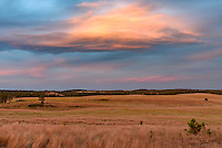 A colorful lenticular cloud hovers above the grasslands of Wind Cave National Park at sunset.