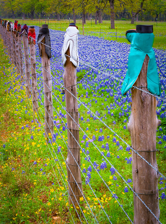 Fence posts topped with cowboy boots in the Texas Hill Country