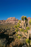 Red Rock Canyon, Las Vegas, Nevada, USA<br />