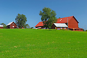 A red farm house barn against a clear blue sky and a green field. Smaland region. Sweden, Europe.