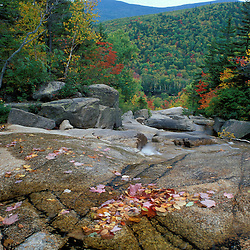 Fall foliage  in New Hampshire's White Mountains. Appalachian Trail. Waterfalls.  Zealand Falls, NH