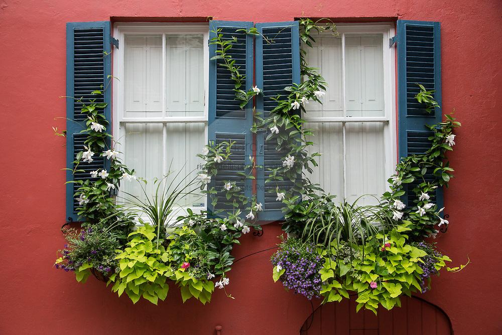 Flower window baskets an shutters on a historic home on Tradd Street in Charleston, SC.