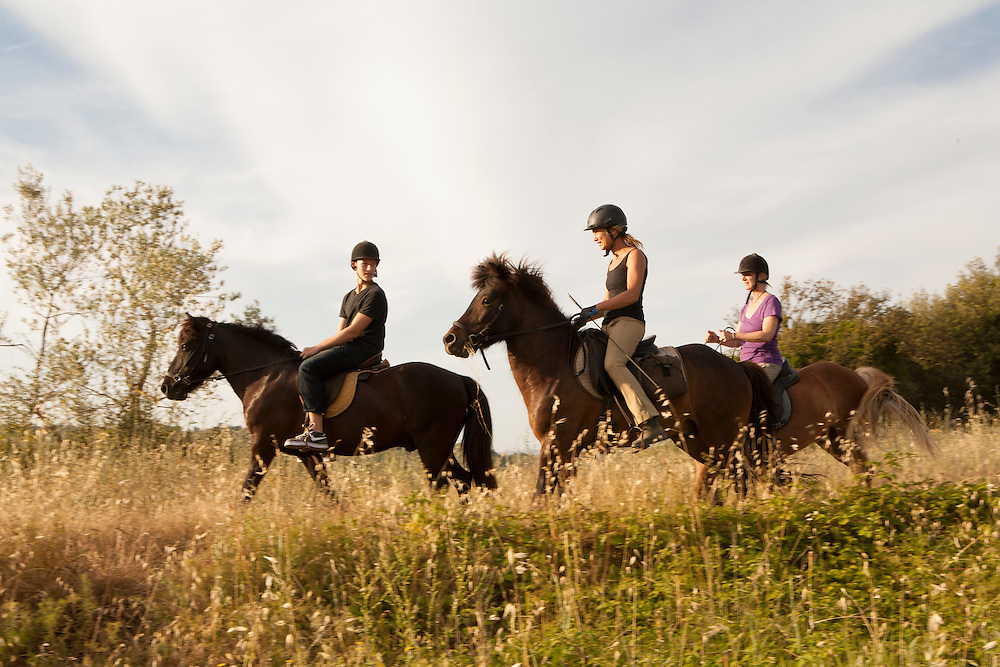 Europe, Italy, Tuscany, Volterra, people horseback riding on Icelandic Ponies.  MR