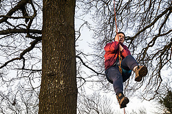 Great Missenden, UK. 28th February, 2021. An activists climbs one of a row of oak trees along Leather Lane. Environmental activists from HS2 Rebellion have recently occupied the trees and set up a camp nearby following local reports that around twelve of the oak trees are threatened with felling for temporary works associated with the HS2 high-speed rail link.