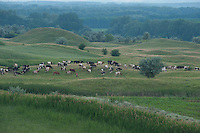 Landscape of the The Hundred Knolls hills, north west of Moldova