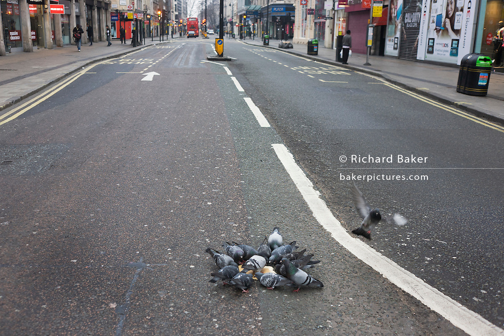 A flock of city pigeons gather to feed on a pizza base in the middle of Oxford Street, London.