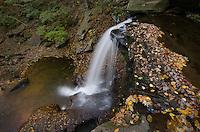 B. Reynolds Falls, Ricketts Glen State Park, Pennsylvania