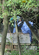 ©London News pictures...02/11/2010. Detectives were today continuing the hunt for the body of a wealthy guesthouse owner, who they believe has been murdered. Joanne Brown, who runs an award-winning bed and breakfast in Ascot, Berkshire, was reported missing at 8am yesterday morning after vanishing from her sprawling country mansion.