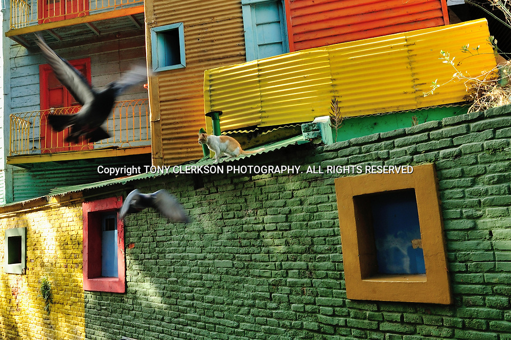 The colourful El Caminito area in the Boca district of Buenos Aires, a street museum with lively bars and restaurants