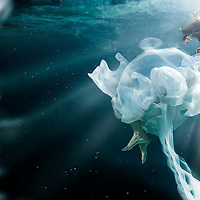 """UnderCurrents"" A surrealistic underwater photo series by Nate Dorn Images.<br />