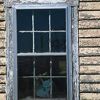 North America, Canada, Nova Scotia, Guysborough County. Weathered window of a rural home in Guysborough County.