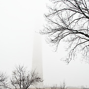 The top of the Washington Monument on the National Mall completely covered by cloud and dense fog on a cold winter's day in Washington DC.