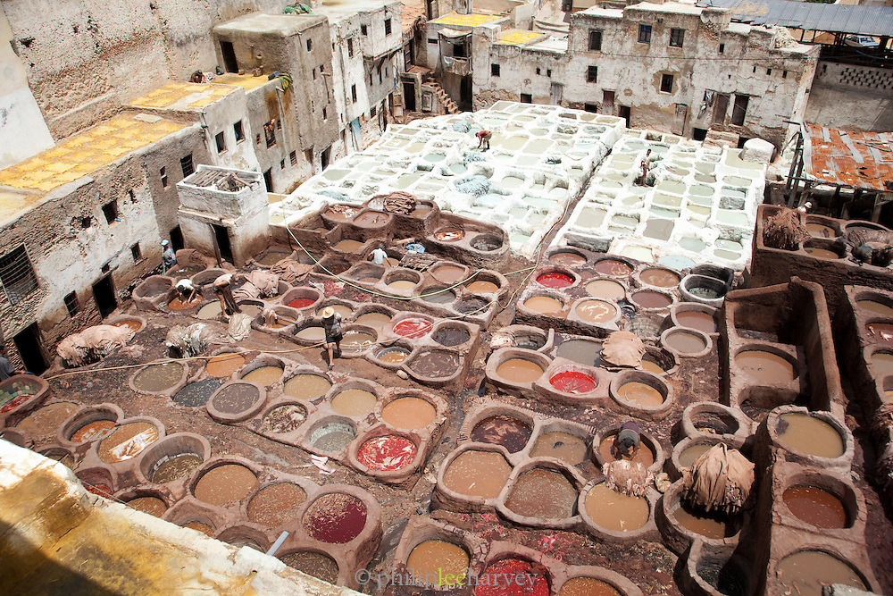 Men dye leathers to colour and preserve them at the Tannery in the medina, Fes, Morocco