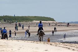 Elisa Arnould, (BEL), Shetan Al Ondrel Ewaldraid<br /> Endurance<br /> Alltech FEI World Equestrian Games™ 2014 - Normandy, France.<br /> © Hippo Foto Team - Dirk Caremans