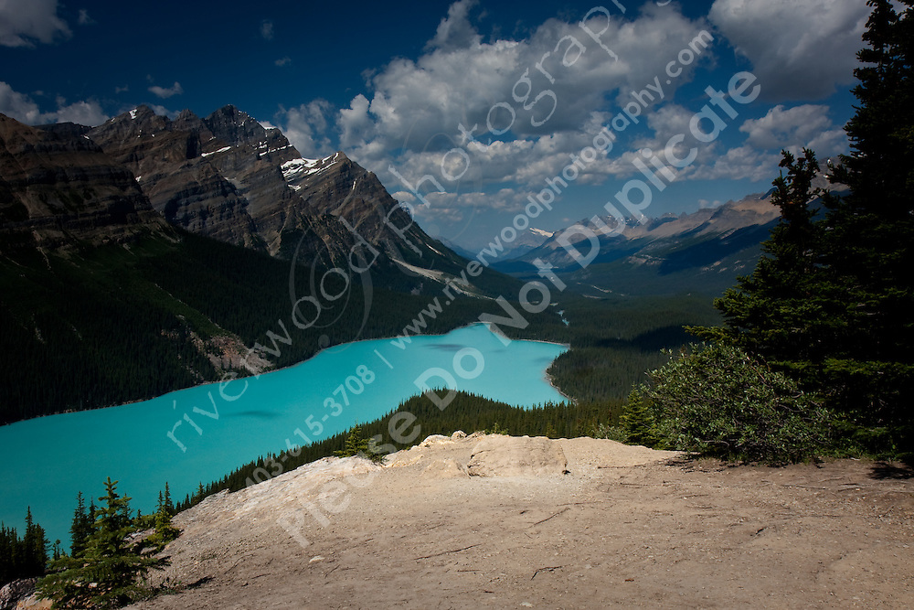Peyto Lake on the Icefields Parkway in Jasper National Park