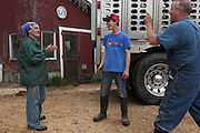 Joan Wortman jokes with Matt Deome, 22, middle, and livestock hauler Henry Bostelman, right, after unloading the second of three truck loads of Premier View cows at Green Acres farm in South Randolph, Vt., Tuesday, May 24, 2016. (Valley News - James M. Patterson) Copyright Valley News. May not be reprinted or used online without permission. Send requests to permission@vnews.com.