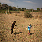 A boy gets scared by a rearing goat.