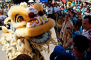 Chinese New Year -- The Year of The Dragon. Perth, Western Australia