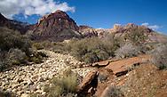 Oak Creek at Red Rock Canyon outside Las Vegas, NV.
