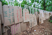 Where am I from installation in the Faraway Forest - The 2017 Latitude Festival, Henham Park. Suffolk 15 July 2017