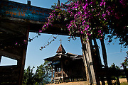 Bougainvillea hangs across the entrance to a Baptist church near Layshee. Almost everyone in the Naga Hills has given up the animist relgion of the headhunter ancestors and converted to either Buddhism or Christianity.