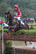 UP IN THE AIR ridden by Paul Tapner (Australia) at Bramham International Horse Trials 2016 at  at Bramham Park, Bramham, United Kingdom on 11 June 2016. Photo by Mark P Doherty.
