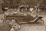 Alaska, Chena Hot Springs. Fairbanks, Old rustic, car now acts as a planter in summer.