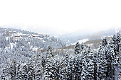 Winter in 2008 Sundance