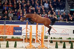 048, Kaiden GPH<br /> KWPN Stallionshow - 's Hertogenbosch 2018<br /> © Hippo Foto - Dirk Caremans<br /> 31/01/2018