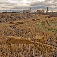 New housing construction encroaches upon extensive farmland around Bozeman Montana.