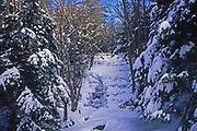 Ice and Snow over waterfall, Bear Creek, PA