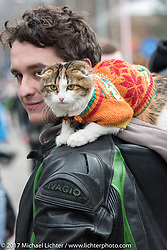 A biker kitty was part of the parade of 1,000 bikes from Prospekt Sakharova in Moscow that arrived at the Motor Spring and Custom and Tuning Show in Moscow, Russia. Saturday April 22, 2017. Photography ©2017 Michael Lichter.