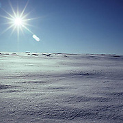 Bareen snow covered field. Early evening. Mid-winter.  Minnesota.