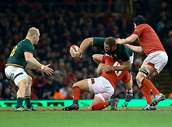 Thomas du Toit of South Africa offloads<br /> <br /> Photographer Simon King/Replay Images<br /> <br /> Under Armour Series - Wales v South Africa - Saturday 24th November 2018 - Principality Stadium - Cardiff<br /> <br /> World Copyright © Replay Images . All rights reserved. info@replayimages.co.uk - http://replayimages.co.uk