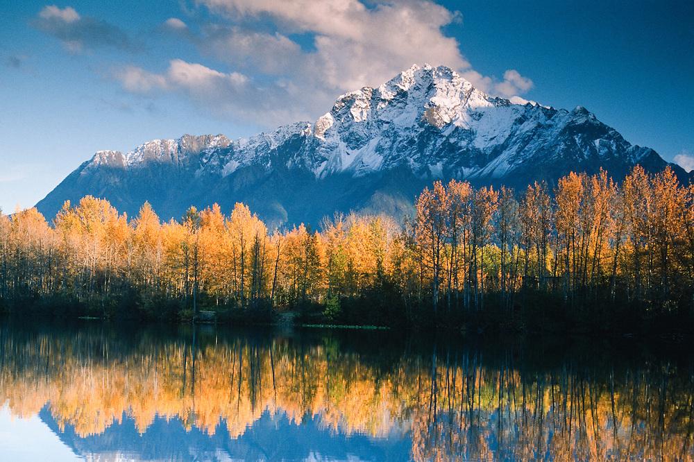 Alaska. Chugach Mts. Matanuska Valley. Pioneer Peak with fall color reflection in Echo Lake.