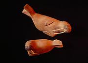 Pair of warlruses carved from cottonwood bark by Elia Abruska of Lower Kalskag, Alaska.