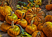 Halloween in New England