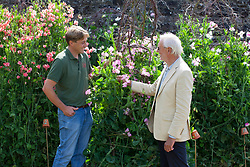 Tom Brown and Roger Parsons at the sweet pea trial at Parham House with Lathyrus odoratus 'Maloy' and Lathyrus odoratus 'Gwendoline'