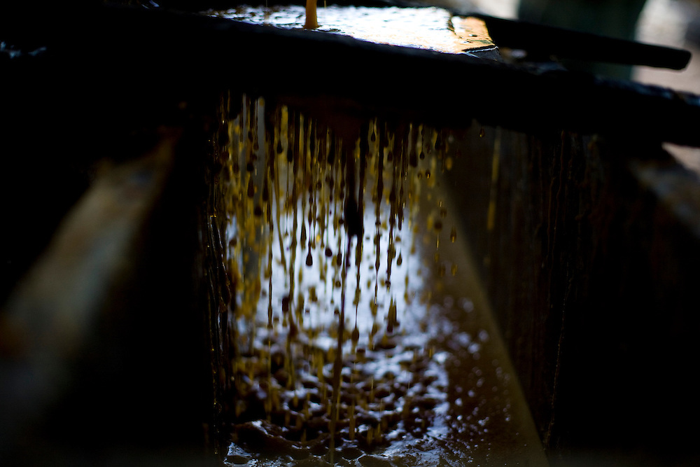 Januaria_MG, Brasil...Producao artesanal de rapadura...The production of the sugar cane candy...Foto: LEO DRUMOND / NITRO