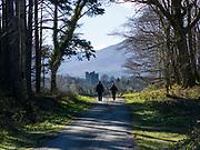 Walking in the Killarney Demesne near Ross Castle, Killarney, Kerry, ireland.<br /> PHOTO: Don MacMonagle<br /> macmonagle.com